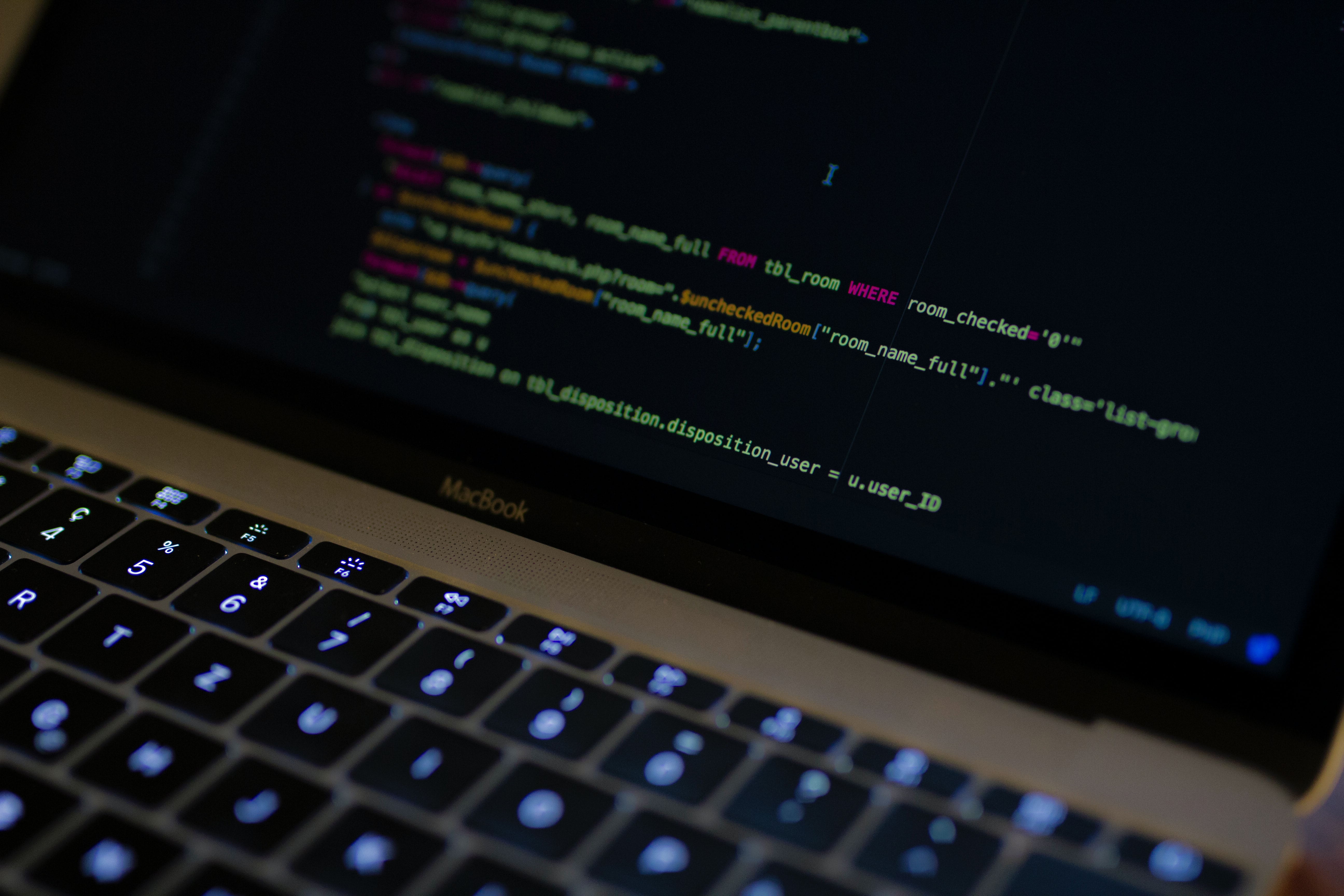 No-code-or-Custom-Software-Development-What-to-Choose