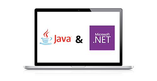 Java or .NET For Web Application Development